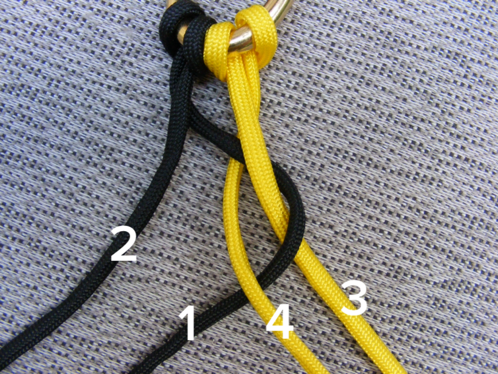 Make a paracord dog leash for Paracord leash instructions