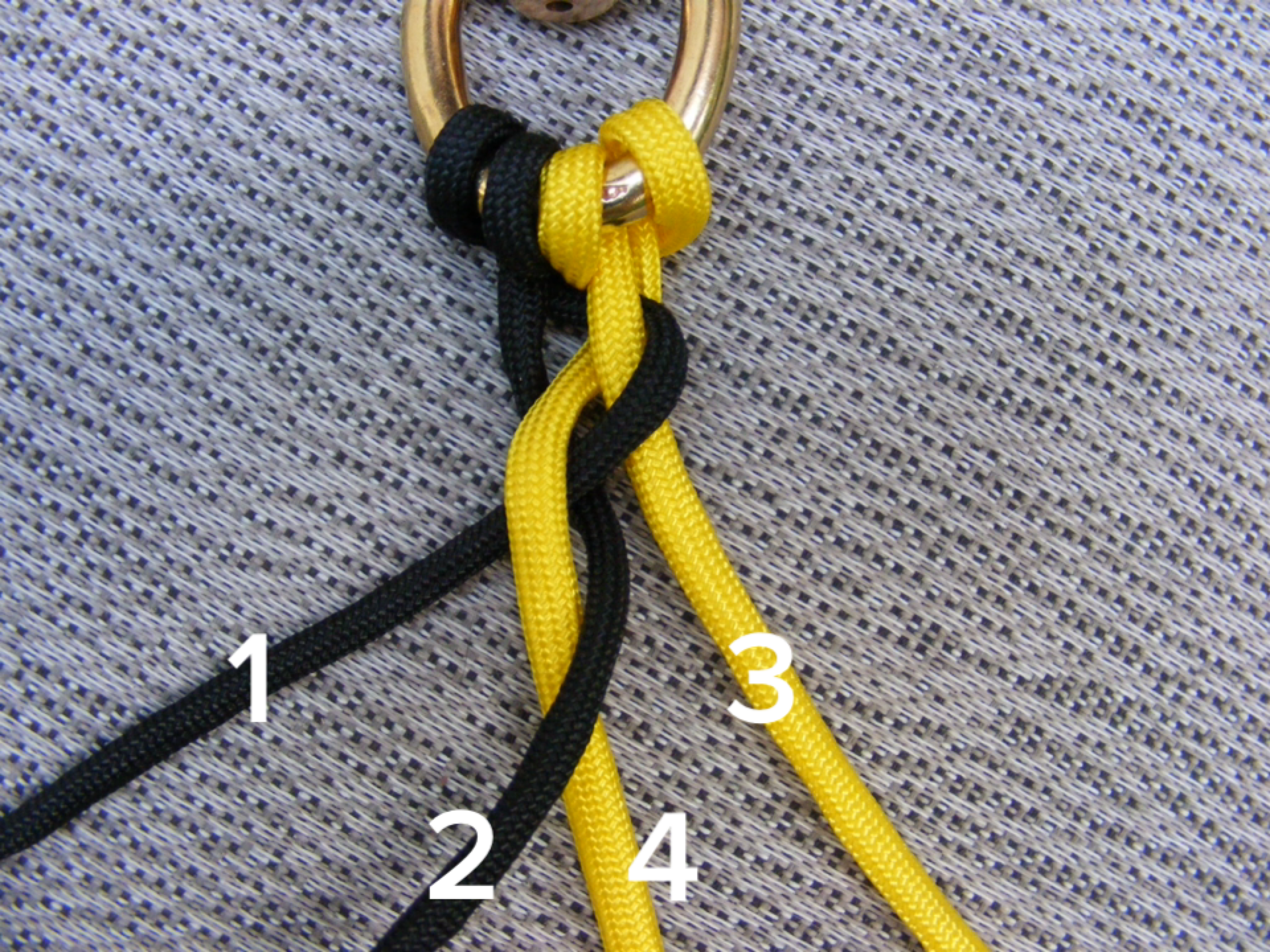 make a paracord dog leash